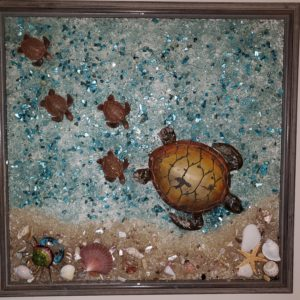 Mama turtle with 4 baby's